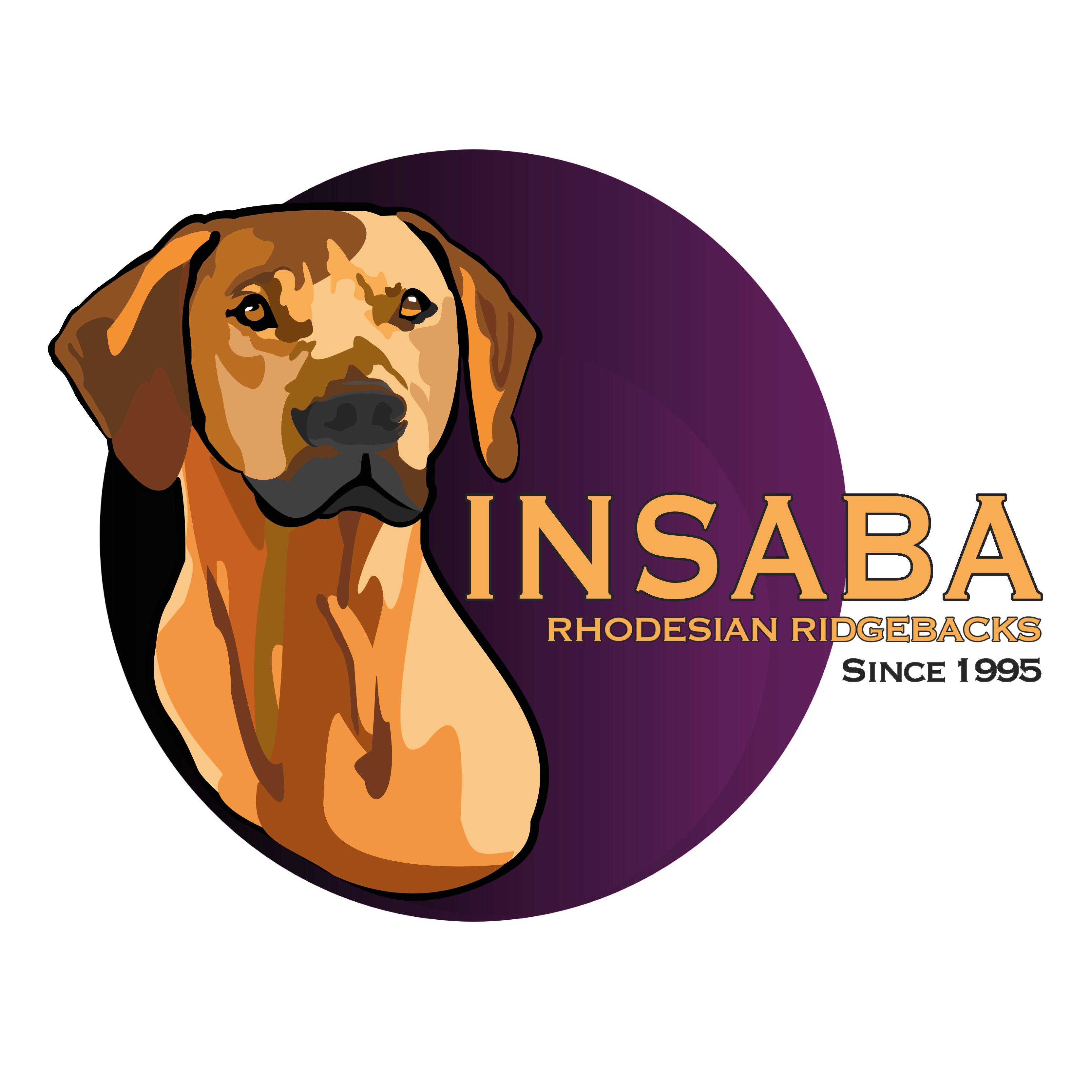 Insaba